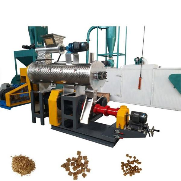 The Price for PE Pet Gravure Printing Machine Computer Control Rotogravure Printing Machine Flexible Printing Machine for Film